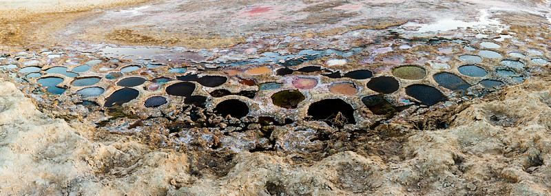 Colorful Exposed Tilapia Nests at the Salton Sea
