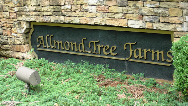 Allmond Tree Farms Alpharetta