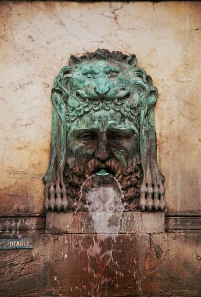 Green Lion      Arles, France
