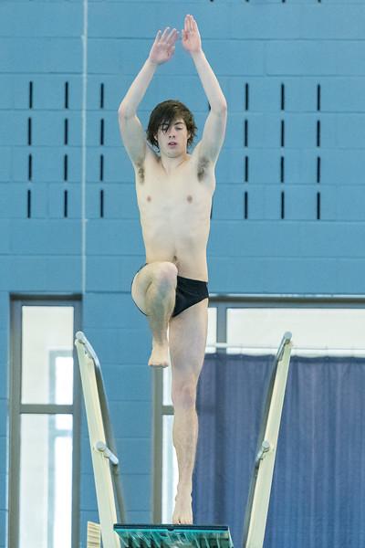 2018_KSMetz_Feb17_SHS Swimming_ State Finals_NIKON D5_4904.jpg