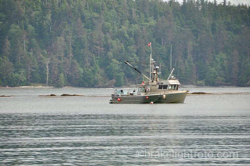 Fishing Boats at Anchor of Kiusta