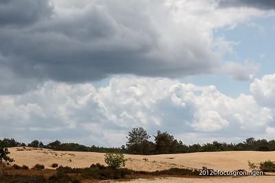 Natuurgebied Maasduinen Limburg