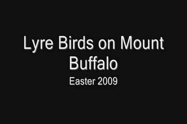 2009 Mount Buffalo