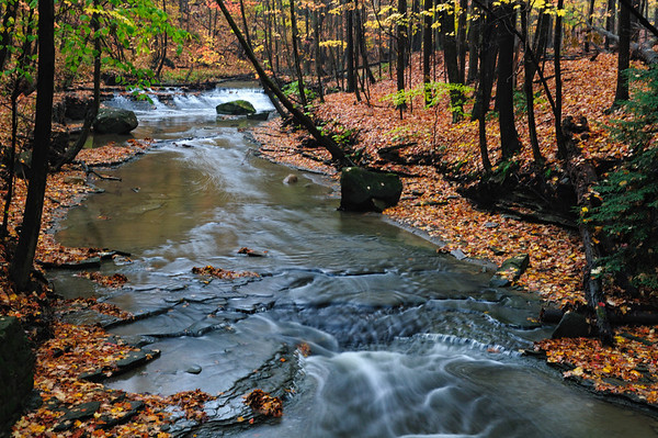 CVPS Photo Walk - Bridal Veil Falls