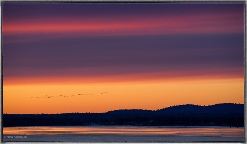Migrating Geese at Sunset