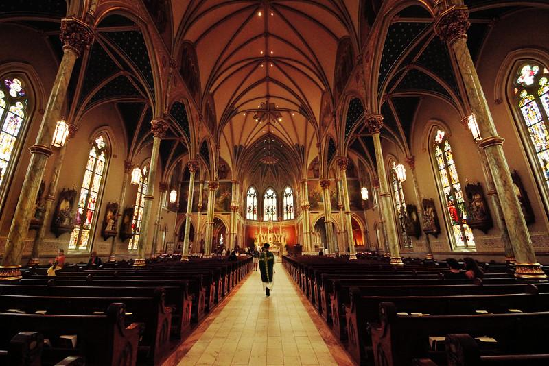 Cathedral Savannah.jpg