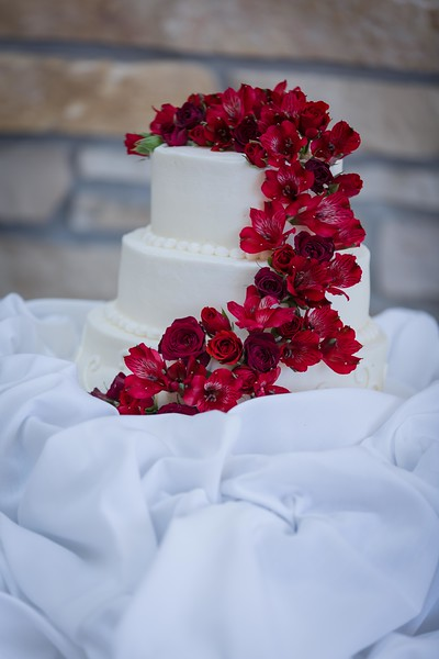 Wedding Cake / Cutting