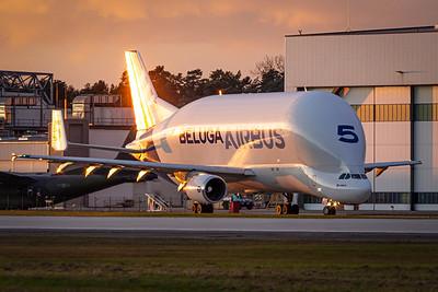 Airbus Beluga Alex