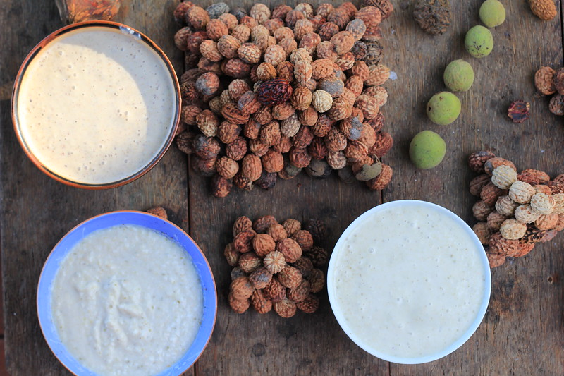 First in Manvatara = Rudraksha ice-cream