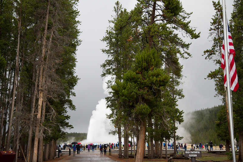 02_Yellowstone National Park_Montana_Wyoming-80.jpg