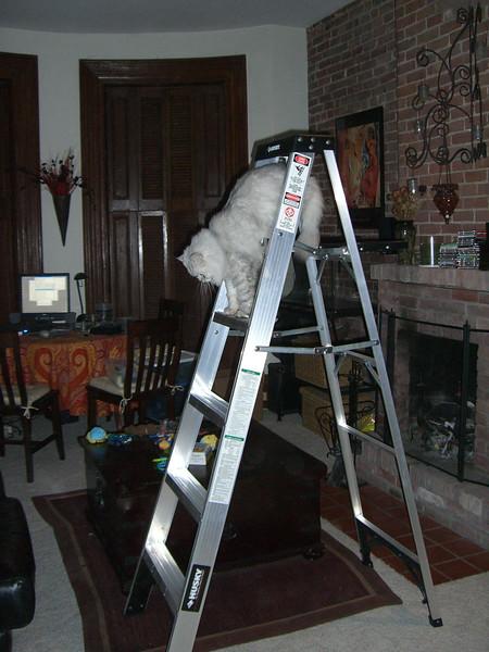 2006-11-08-21-11-13 2006-11-08 CIMG3307.jpg