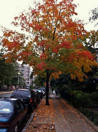 DC October