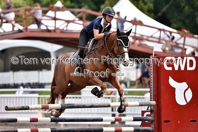 251. Sauteur Junior Amateur Jumper M0.90 & Pony