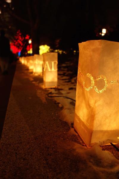 SLC Temple Christmas