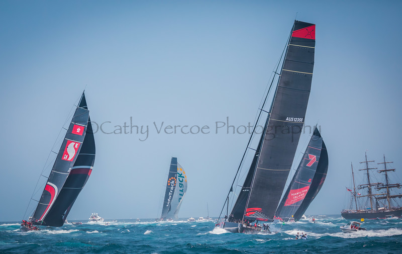 Infotrack leads Wild Oats XI, Scallywag and Comanche