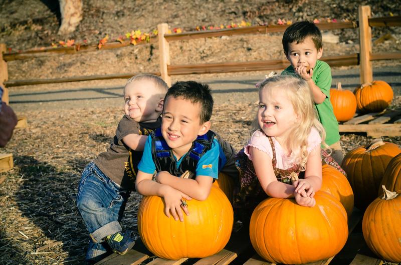Pumpkin Patch-28.jpg
