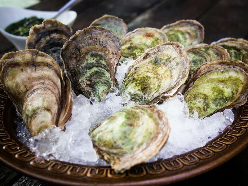 oysters unshucked on ice 3.jpg