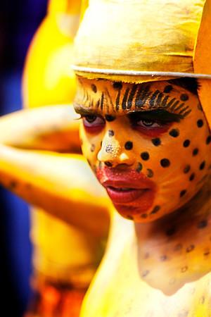 Puli Kali  : The Tiger Dance of Kerala, India