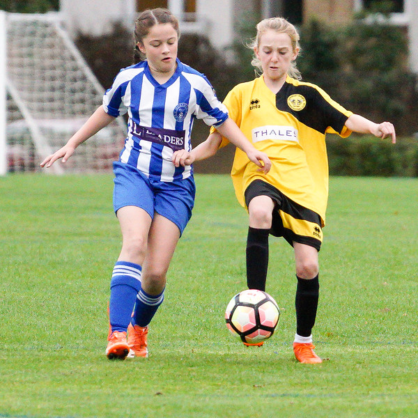 Crawley Wasps U12 (1) vs Horsham Sparrows U12 (1) on October 14, 2018 at Ewhurst Plying Field, Crawley, Crawley. Photo: Ben Davidson, www.bendavidsonphotography.com (181014-362)