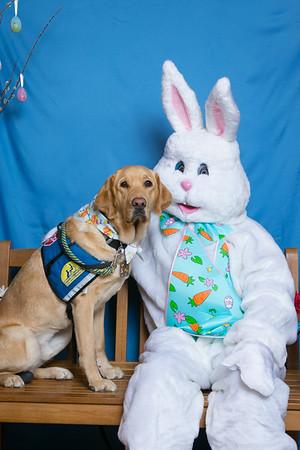 BVH Easter Bunny Photos