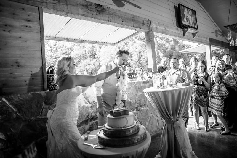 2014 09 14 Waddle Wedding - Reception-678.jpg