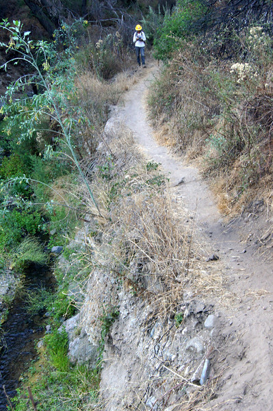 20110825021-El Prieto Trailwork Banner.JPG