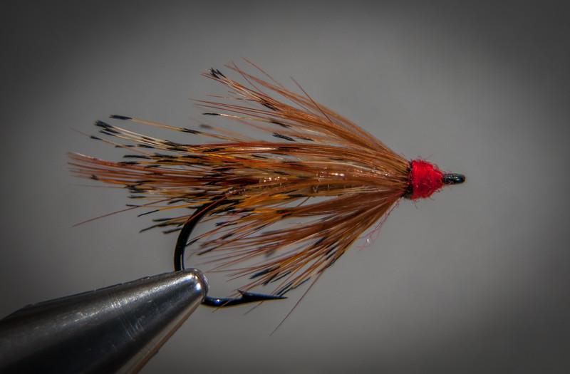 Silver Shrimp - Farlow