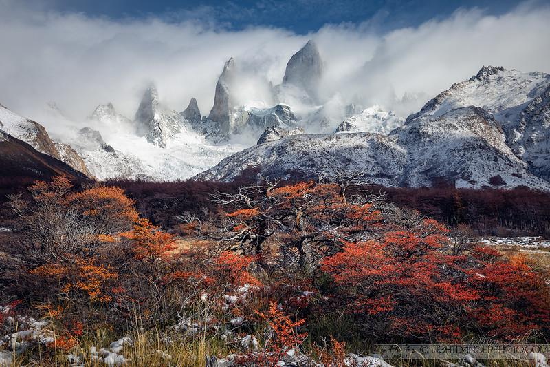 Patagonia - Snow 10.jpg
