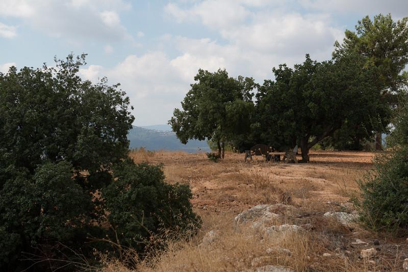 Israel-6687.jpg