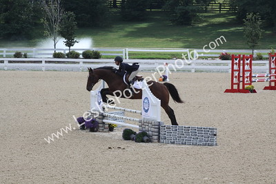 2015 New Vocations Thoroughbred Show
