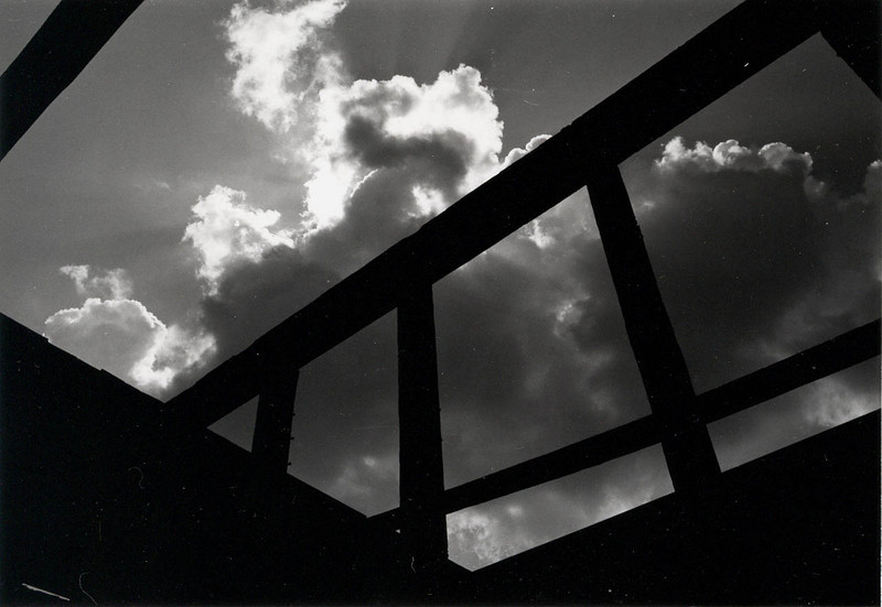PUPPY IN THE SKY Arlington, Texas  This photograph was originally done as an assignment on texture contrasts for a photo class I was attending in college. It wasn't until I printed it out at home that I saw the puppy in the sky jumping up with his head turned to his left. Finding shapes in clouds -- or just about anything -- has always been a favorite pastime of mine.