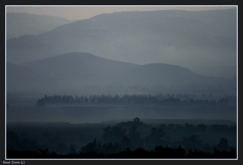 2013-12-30_7654 Misty Morning.jpg