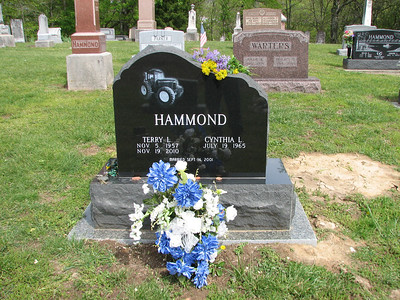 Terry Hammond - Bean Cemetery