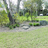 garden bed with native grasses and shrub planting
