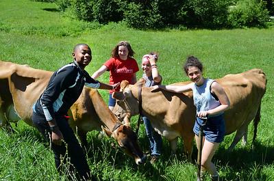 Tamarack Farm 2015