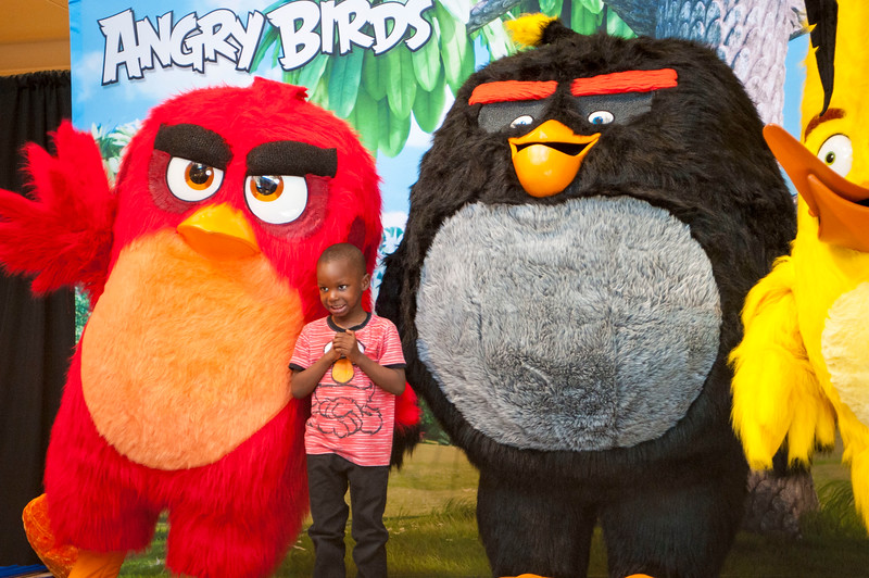 Angry Birds StoneCrest Mall 216.jpg