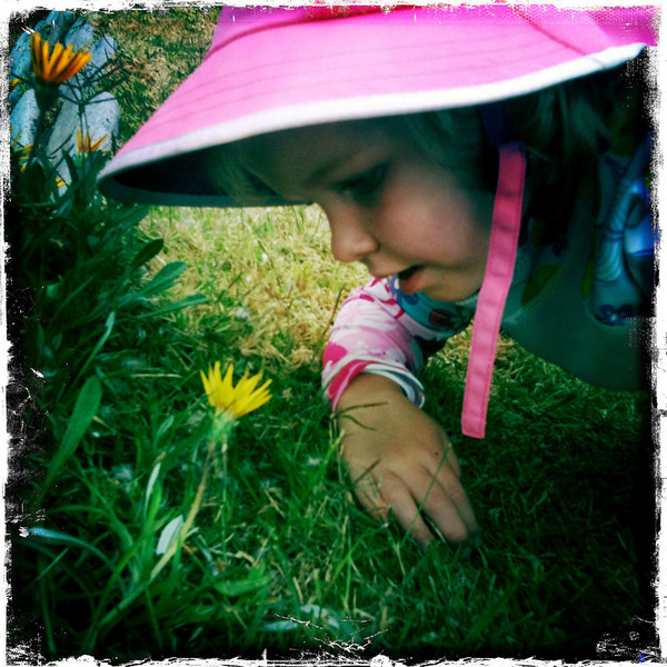 Stopping to smell the flowers ...