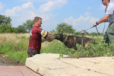 k9 Water training