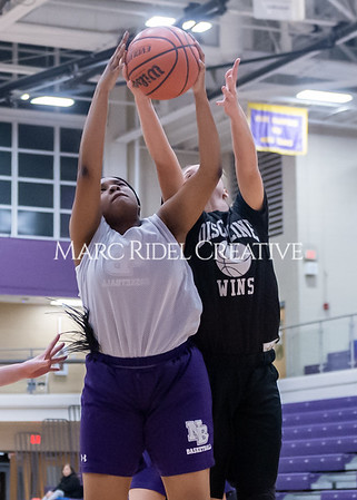 Broughton girls basketball vs Wake Forest. November 14, 2019. D4S_9975