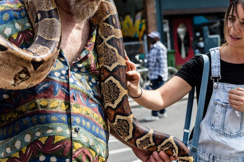 Snake & Handler