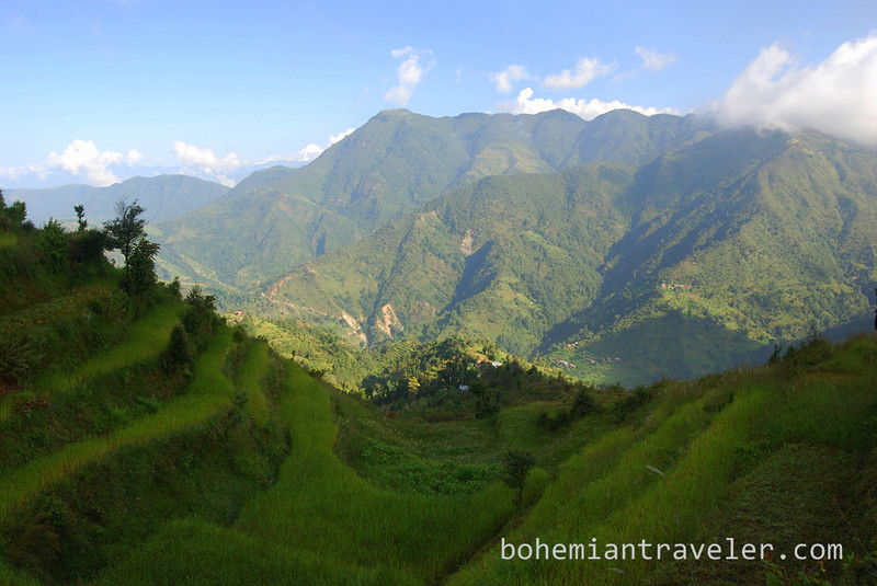 View of terraces along the Helambu Trek, Nepal.