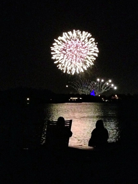 2013 January Disney