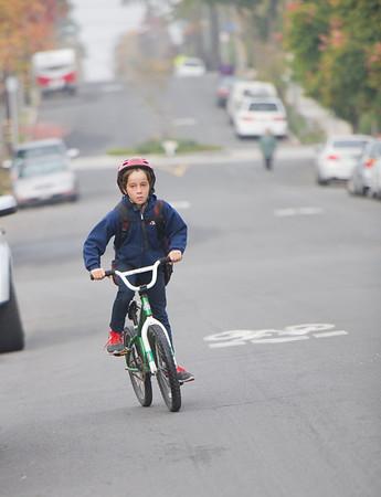 bike blvds