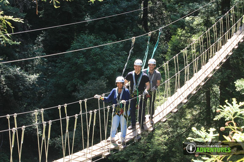 redwood_bridge_1528411442444.jpg