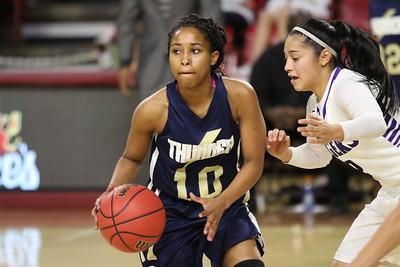 2015-2016 Girls Basketball Desert Vista vs Millennium  - State Quarterfinals