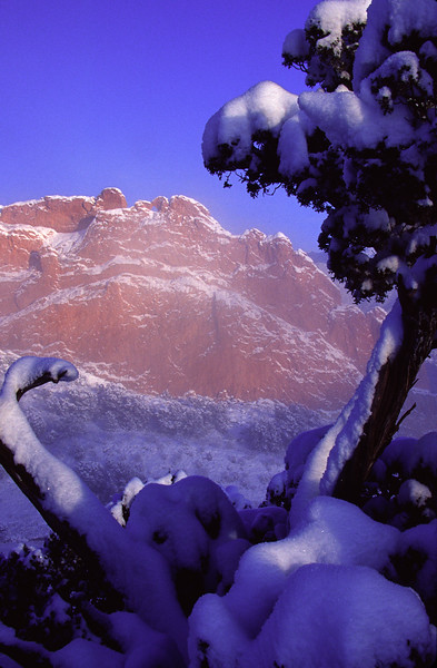 Misty morning after an early spring storm at Kissing Camels Rock, Garden of the Gods, Colorado Springs, CO.