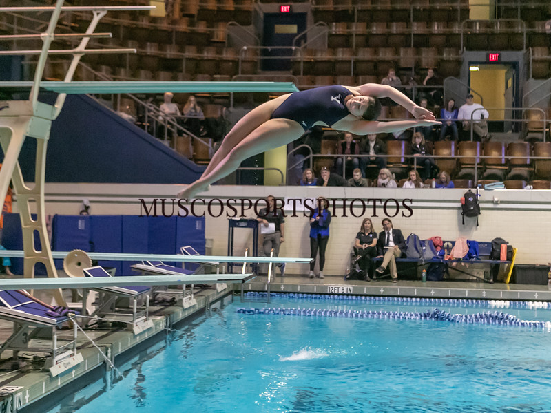 Swimming-diving vs Seton Hall_1103.jpg