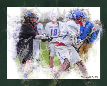 LaCrosse Collages