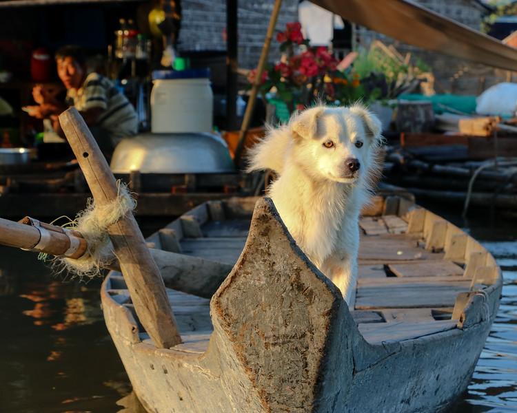 Cambodia-2018-5514.jpg