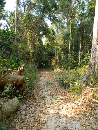 Cambodia by Skylar